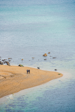 Dog walkers walking round the headland of a pebble beach