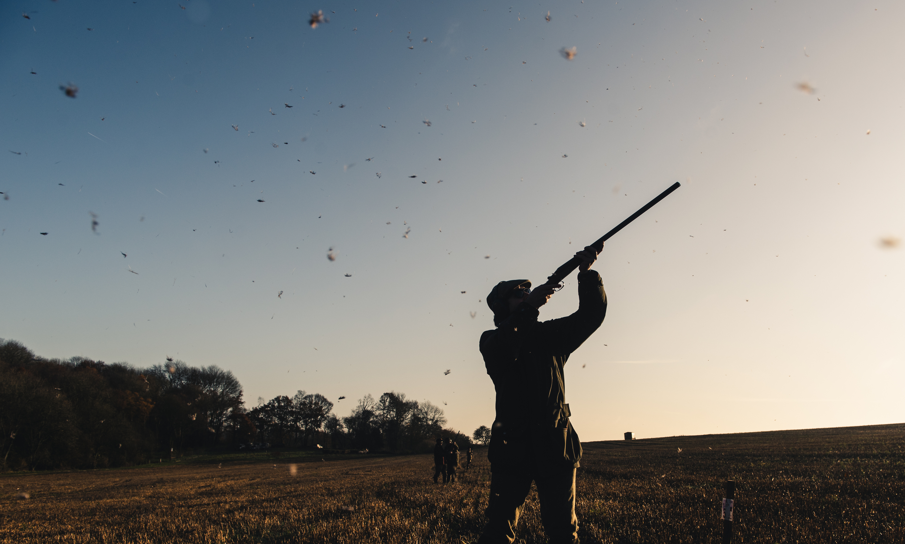 game-shooting photographer based in the Cotswolds specialising in atmospheric images of countryside images