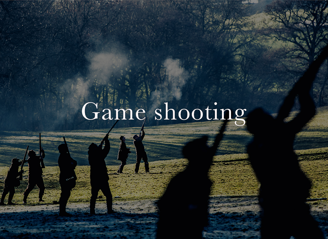 game shooting images, game-shooting photographer, pheasant shooting photographer, fieldsports photographer of the year, fejildsposrts photography, driven pheasant shooting photography, commercial shooting images, rural photographer, rural sports photographer