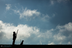 silhouette of gun and gun dog in blue sky