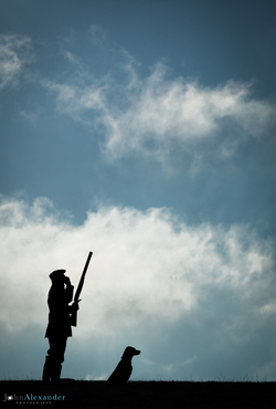 vertical silhouette photograph of gun and his gun dog
