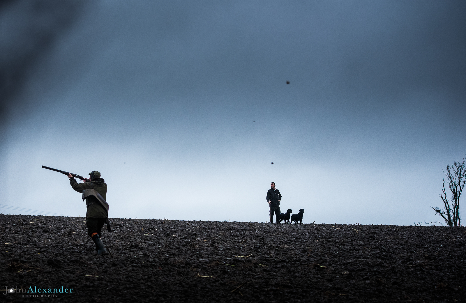 silhouette of gun with beater and gun dogs behind at dusk