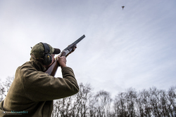 gun shooting high pheasant