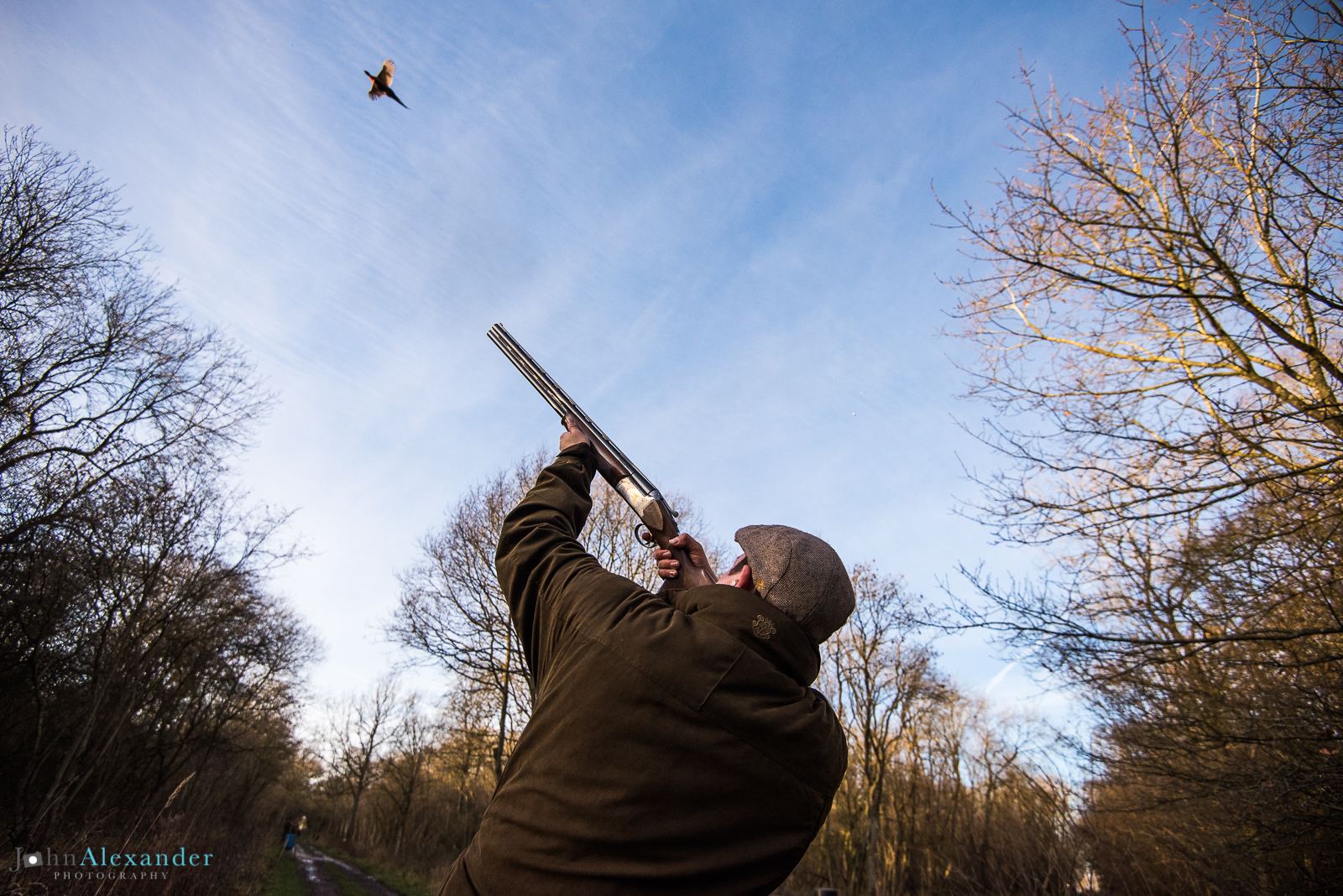 gun shooting high pheasants in a wooded drive