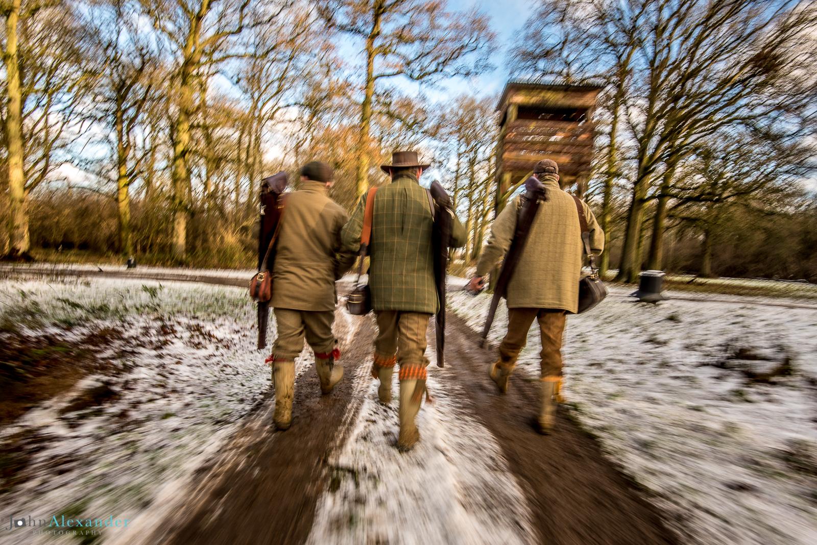 guns walking to the next drive on pheasant shoot in UK