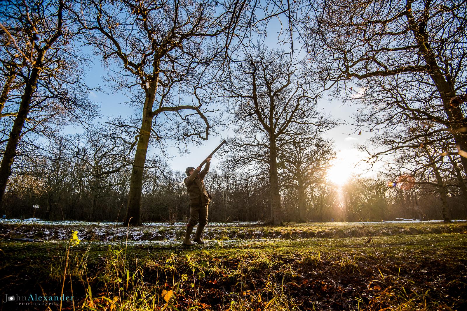 gun shooting through trees with sunset