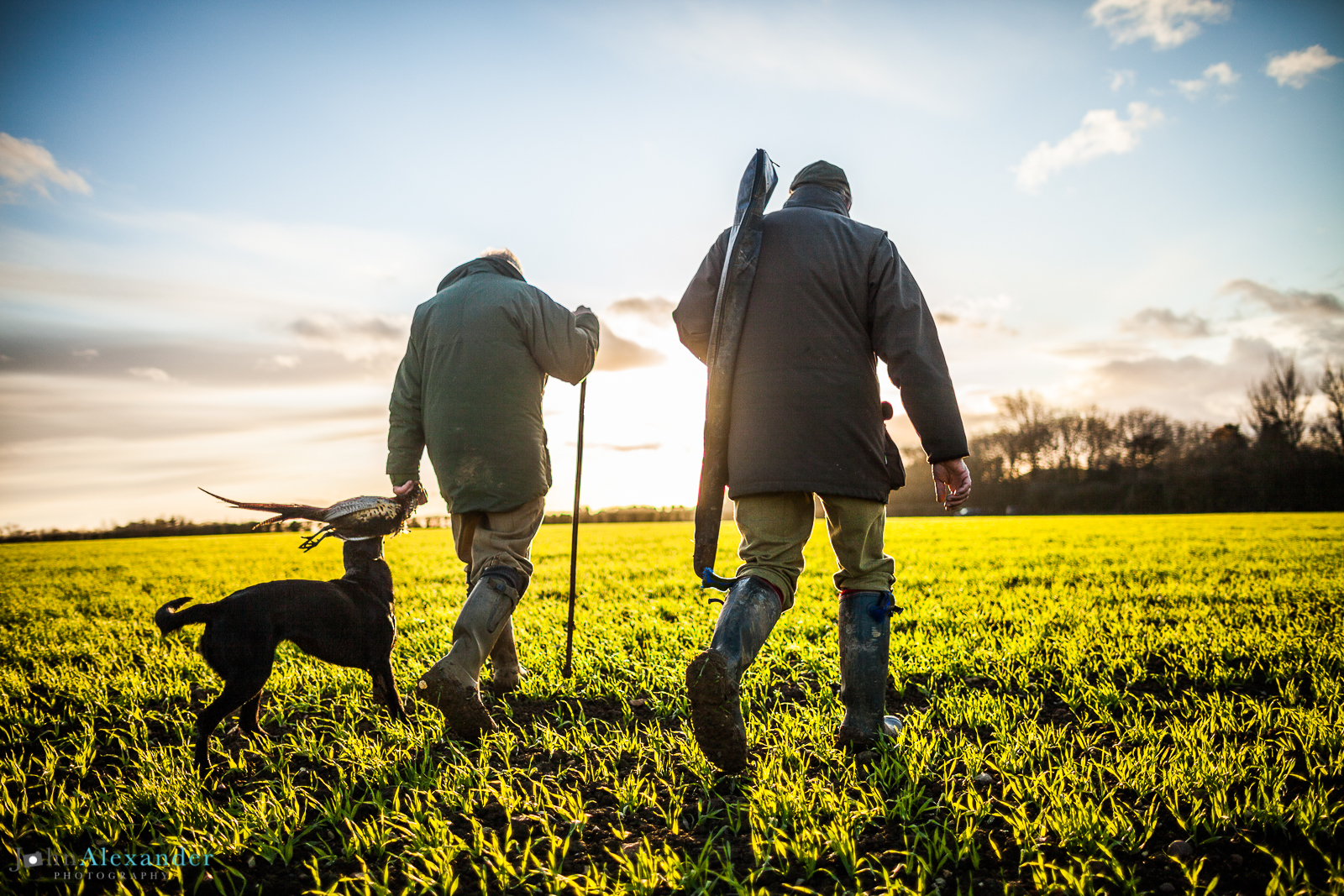 guns into sunset with gun dog