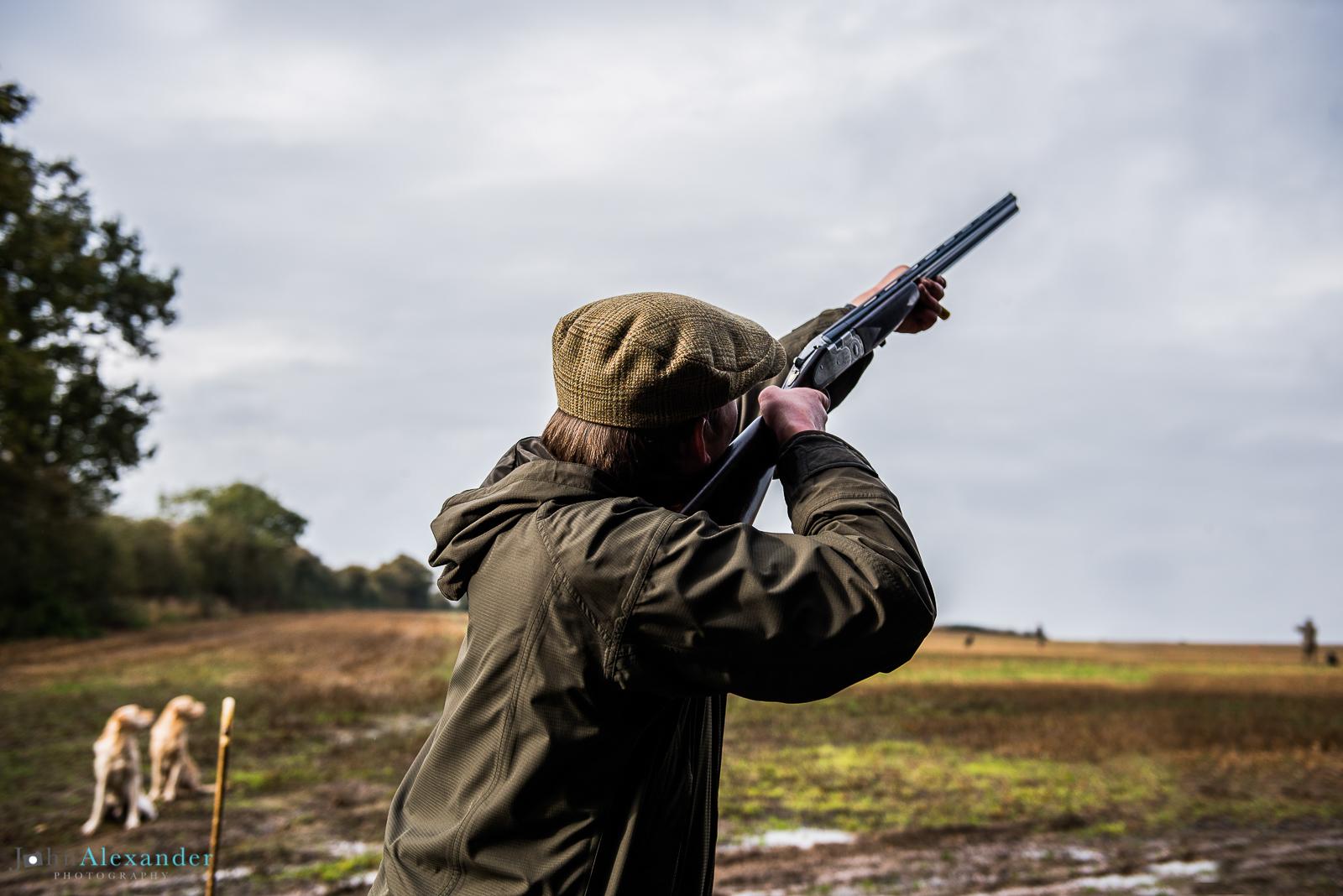 gun shooting with golden labrador gun dogs waiting by peg