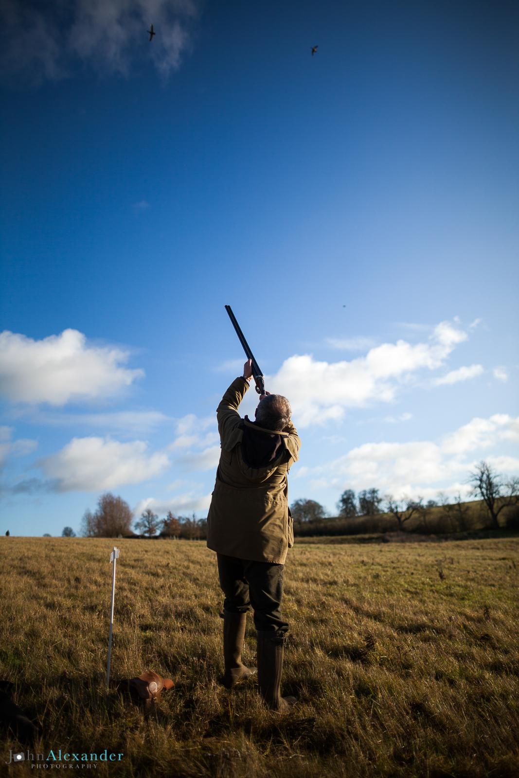 vertical action photo of a gun shooting pheasants