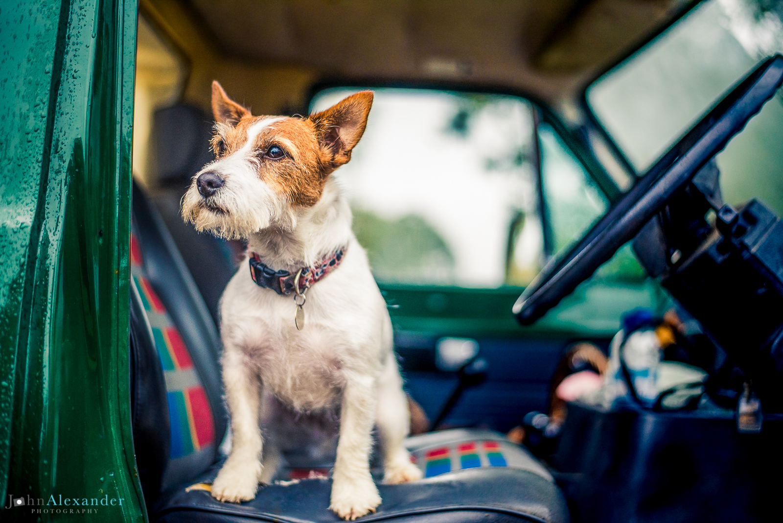 Jack Russell dog sitting on front seat of Land Rover