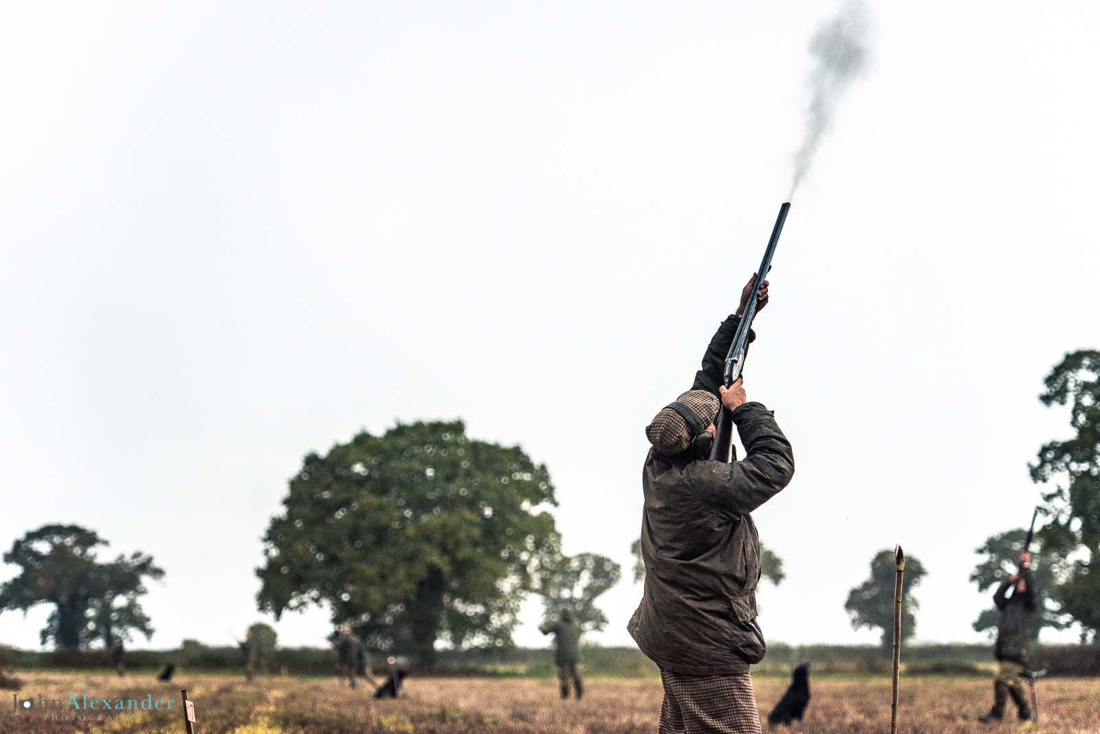 Gun aiming high and firing at pheasants flying overhead on a driven game shoot in the UK