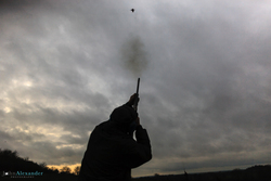 silhouette of gun shooting a pheasant at dusk