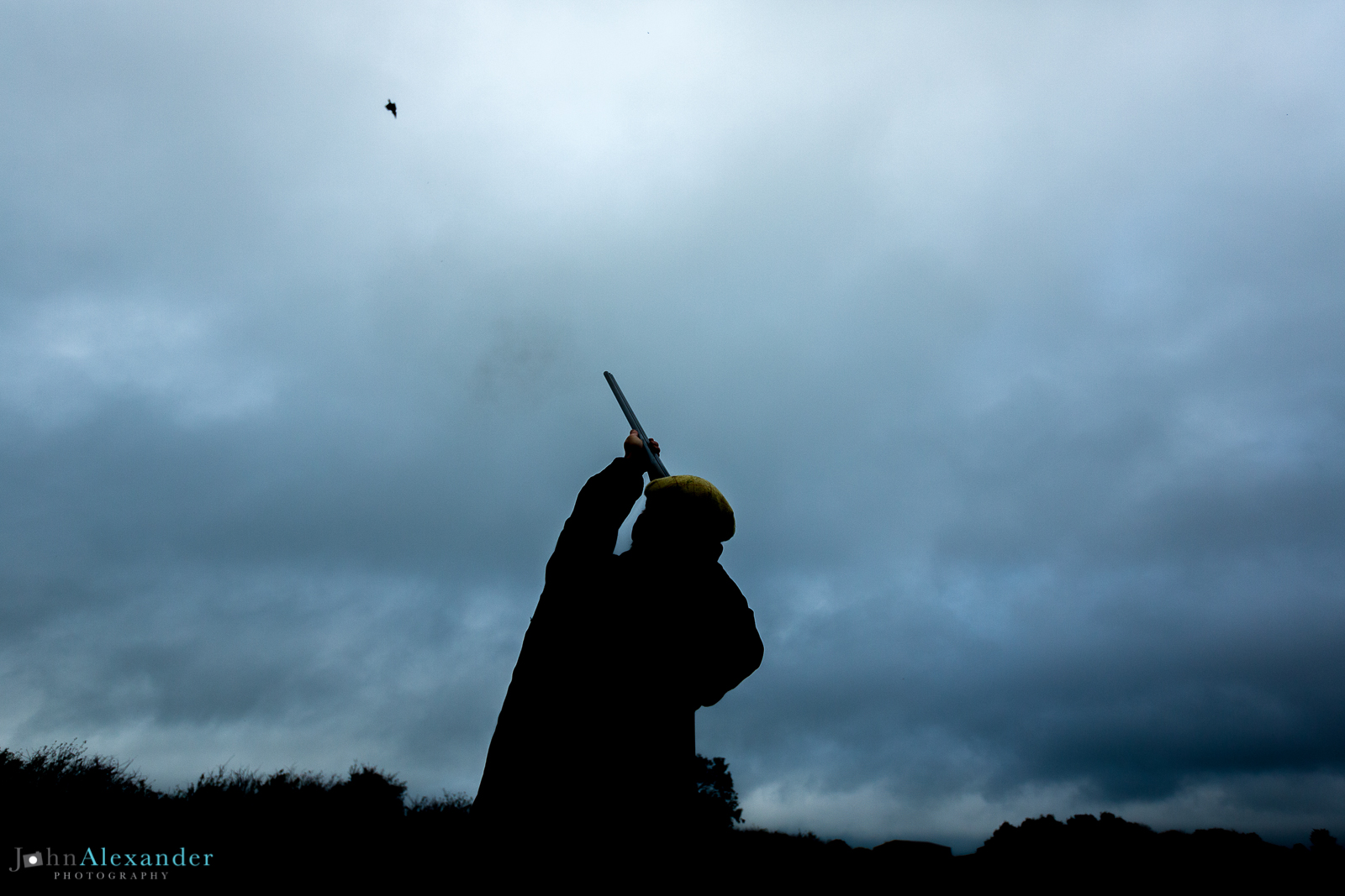 silhouette of gun shooting at a pheasant at dusk