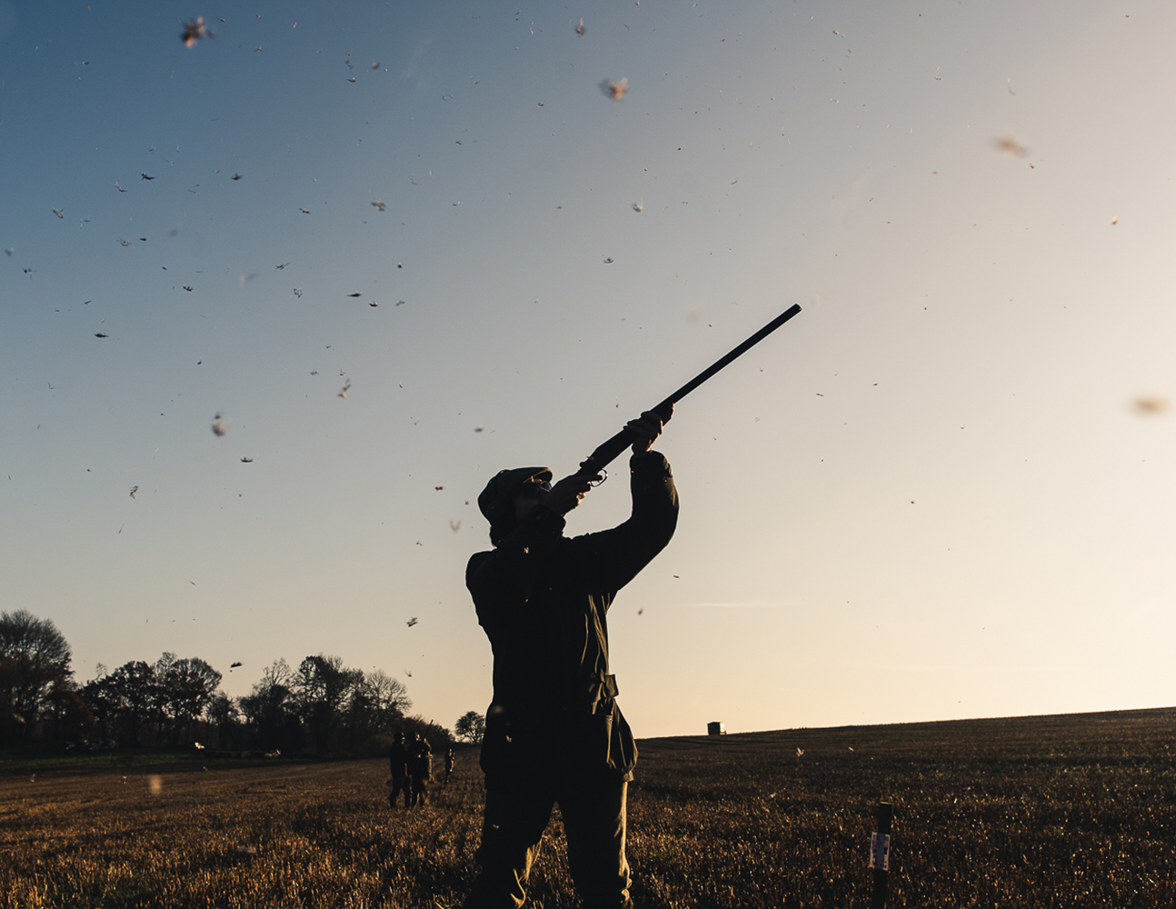 game-shooting pheasant fieldsports photographer based in the Cotswolds specialising in atmospheric images of countryside images