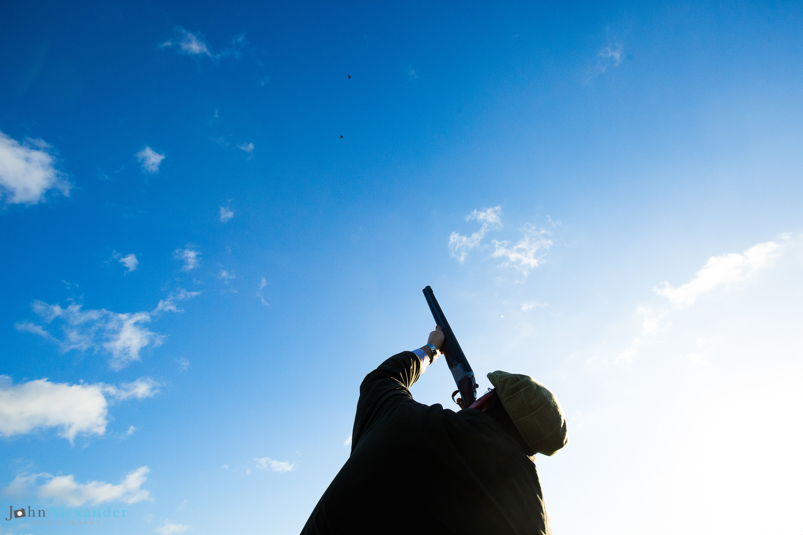 silhouette of gun shooting at pheasant in blue sky