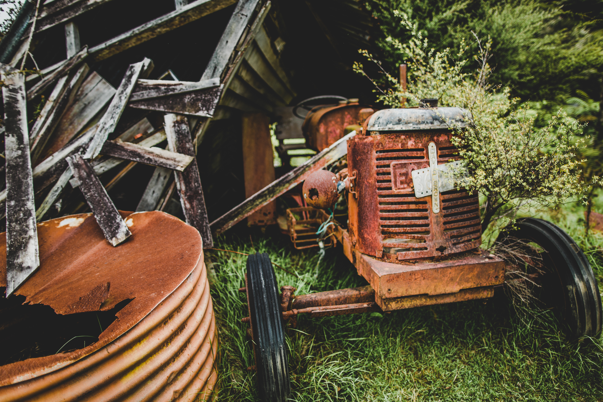 Rusty Tractor standing in the bushes