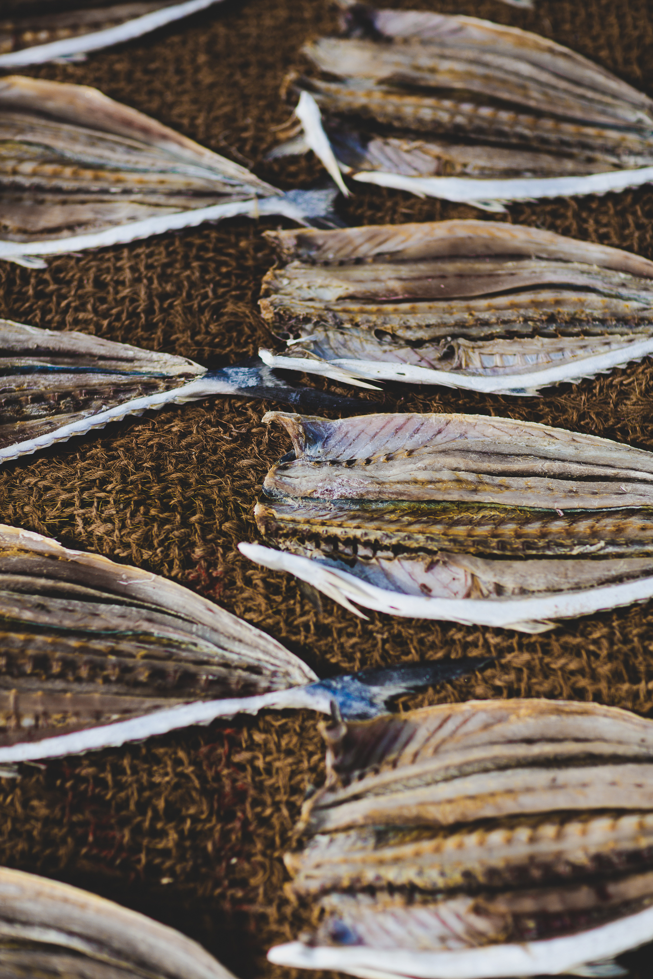 Descaled fish drying