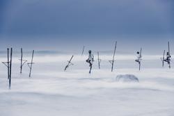 A group of stilt fishermen waiting for fish